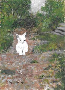 白い猫_R