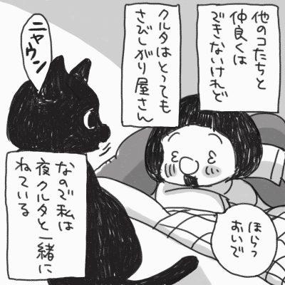 他のコたちと仲良くはできないけれど、クルタはとってもさびしがりやさん。なので私は夜、クルタと一緒にねている。「ほらっ、おいで」黒猫のクルタが「ニャウン」と返事をしている