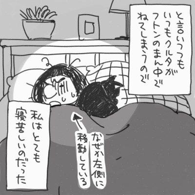 と言いつつも、いつもクルタがフトンの真ん中でねてしまうので、私はとても寝苦しいのだった なぜか左側に移動している